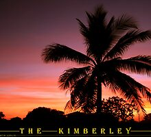 Palm Tree at Sunset by Downhillerdave