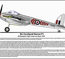 De Havilland Hornet F1 Profile by coldwarwarrior