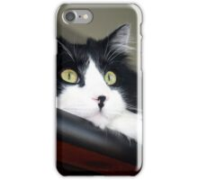 Buddy - Tuxedo Maine Coon Cat | Bellport, New York  iPhone Case/Skin