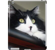 Buddy - Tuxedo Maine Coon Cat | Bellport, New York  iPad Case/Skin
