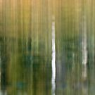 Reeds and Trees by Leroy Laverman