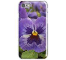 Blue Pansies iPhone Case/Skin