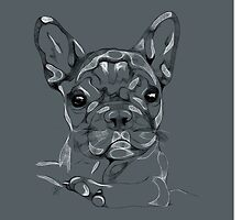 Sketchy Frenchie by Beth Thompson