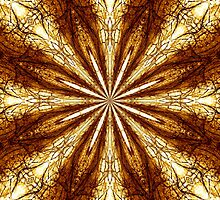 Gold Brown Sun Earth Eight Rays Kaleidoscope  by M Sylvia Chaume