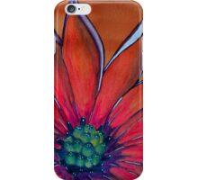 African Daisy iPhone Case/Skin