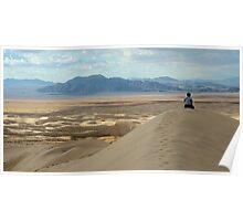 Mojave Desert; California Poster