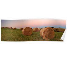 Gippsland hay rolls  Poster