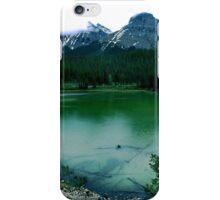 Dead Wood iPhone Case/Skin