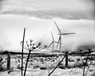 Blow the wind northerly by clickinhistory
