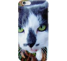 Green Eyed Pussy Cat iPhone Case/Skin