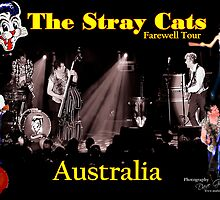 Stray Cats Farewell tour Australia by MidnightRocker
