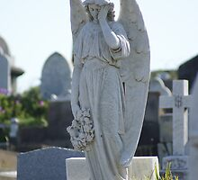 Waverley Cemetery, Sydney - beautiful angel by BronReid