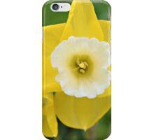 Avalon iPhone Case/Skin