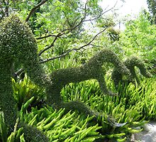 Topiary by Crystallographix