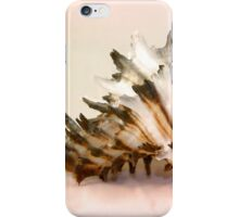 Delicate Shell iPhone Case/Skin