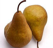 pair of pears by Jerry Deutsch