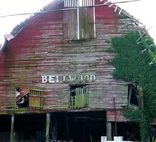 BELLWOOD by BShirey