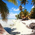 Caribbean beach by Tom Prokop