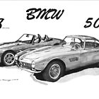 BMW Z8 and 507 by Steve Pearcy