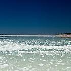 Salt Flats by Juanita Marchesani