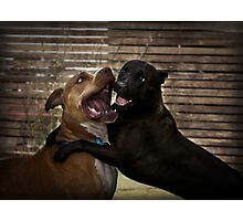 Kiss me! Photographic Print