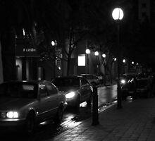 Rainy Street Night Reflections by digipix