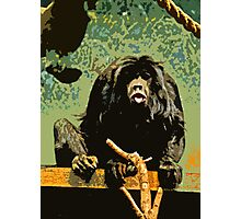Cheeky Monkey Cut-Out, 70's Style Photographic Print