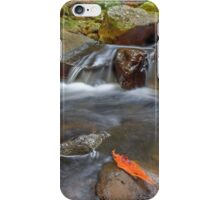 Cool & Calm in the Creek - Gold Coast Qld Australia iPhone Case/Skin