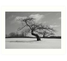 Lonely Winter in Connecticut  Art Print