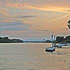 Rhine Evening by Turtle6