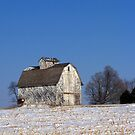 Sun-Kissed Barn by Brian Gaynor