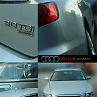 Audi Compilation by netties001