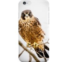 Australian Hobby iPhone Case/Skin