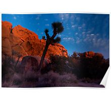 Glowing Rocks, Joshua Tree Poster