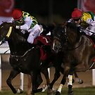 Horse Racing at night by Jo McGowan