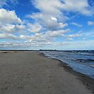 Looking Down The Beach by Cynthia48