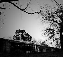 Two barns with trees by Greg Allen
