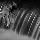 Ice & Water by Cyrusdvirus