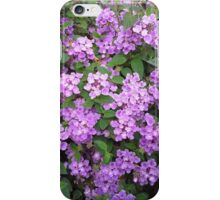 Little Purple Flowers iPhone Case/Skin