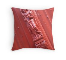 Carved saint Jacob in Brugues Throw Pillow