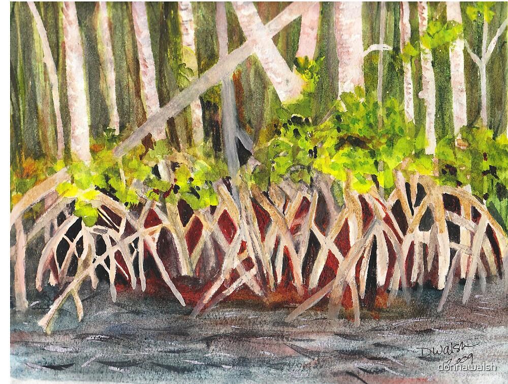 Mangrove at Gumbo Limbo by donnawalsh