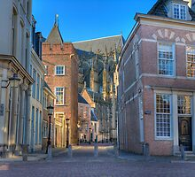Old houses and cathedral by leenvdb