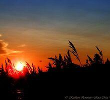 July Sunset - Montana, USA by rocamiadesign