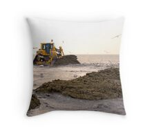 Playing on the beach.... Throw Pillow