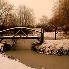 Bridge over frozen waters by Charlotte Jarvis
