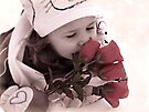 Roses For Valentines Day by Shelly Harris