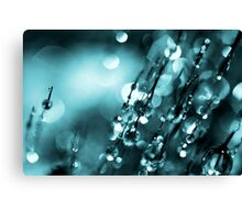 Blue Mist Canvas Print