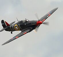 Hawker Hurricane (Intruder colour scheme) by Shane Ransom