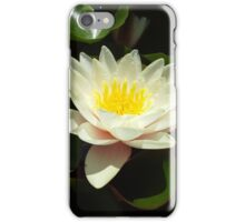 White Water Lily Flower iPhone Case/Skin