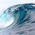 Empty Blue Lefts by Vince Gaeta